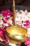 Mestolo dorato in acqua con i petali del fiore Fotografie Stock