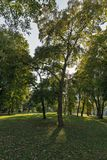 Mestsky or City park in Kosice old town, Slovakia. Stock Image