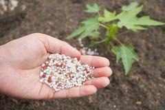 Meststof op landbouwershand stock fotografie