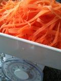 Mesure de carotte Images stock