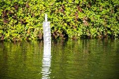 Mesure de taille de l'eau sur le canal de Chichester près de Poyntz Bridge, le Sussex occidental, Angleterre images libres de droits
