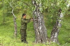 Mesure du diamètre d'un arbre images stock