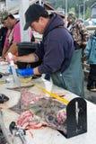 Mesures marines officielles d'un inspecteur un poisson de flétan à la station de nettoyage photographie stock libre de droits
