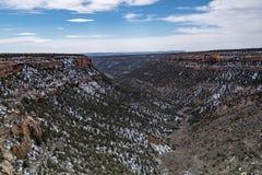 Mesy verde parka narodowego pustyni góry krajobraz fotografia royalty free