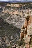 Mesy verde parka narodowego pustyni góry krajobraz obrazy stock