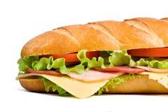 Metà del panino lungo del baguette Immagine Stock