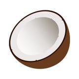 Metà della noce di cocco con ombra Fotografie Stock