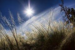 Metà di Sun di giorno Fotografie Stock