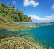 Metà e metà barriera corallina della costa tropicale subacquea Immagine Stock Libera da Diritti
