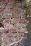 Metà rossa del muro di mattoni coperta di spazio della copia del cemento Fotografia Stock Libera da Diritti
