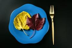 Metáfora, calorías inferiores de la dieta sana Foto de archivo libre de regalías