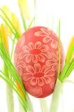 Met de hand gemaakt gekrast paasei onder krokusbloemen Royalty-vrije Stock Afbeeldingen