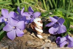 Met de hand gemaakte bronsring met paarlemoeren op aardbackgrou Royalty-vrije Stock Foto