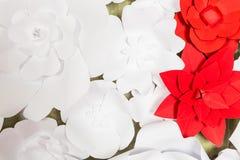 Met de hand gemaakte document bloemen op binnenland Stock Foto's