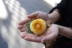 Met de hand gemaakte document gele rozen Royalty-vrije Stock Foto
