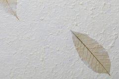 Met de hand gemaakte document textuur met gerecycleerde materialen, boombladeren en katoenen vezels stock foto's