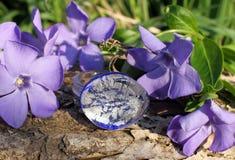 Met de hand gemaakte glas zilveren ring op de aardachtergrond Royalty-vrije Stock Fotografie