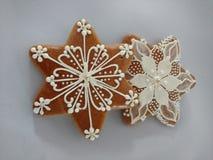 Met de hand gemaakte de koekjes van peperkoekkerstmis, uniek stock foto's