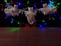 Met de hand gemaakte speelgoed-slinger Katten met een Nieuwjaar` s slinger Stock Afbeeldingen