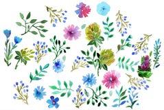 Met de hand gemaakte de verfbloemen en bladeren van de waterverfhand Geïsoleerdj op witte achtergrond Gebruik voor kaart, Moeder` royalty-vrije illustratie