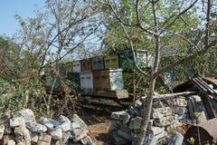 Met de hand gemaakte vervoerde bijenkorven in het dorp, Shagany, de Oekraïne Stock Foto's