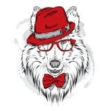 Met de hand geschilderde rashonden Collie die een hoed en zonnebril dragen vector illustratie