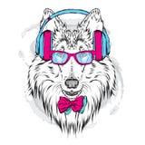 Met de hand geschilderde rashonden Collie die hoofdtelefoons en zonnebril dragen stock illustratie