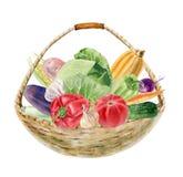 Met de hand geschilderde waterverf clipart met verse groenten in mand stock afbeeldingen