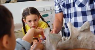 Met? di sezione dell'insegnante maschio che spiega modello di scheletro animale nell'aula 4k archivi video
