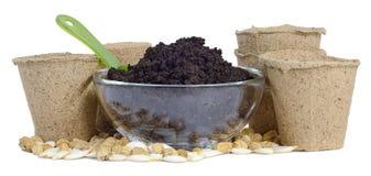 Met en forme de tasse la cuvette de terre de tourbe Photo libre de droits