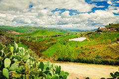 Met en place cultivé en Sicile centrale Photos stock