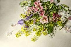 Met gevoelige bloemen van Alstroemeria en purpere irissen lig is schuin op een licht triplex stock afbeeldingen