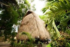 Met stro bedek dakbungalow bij tropische toevlucht Stock Foto's
