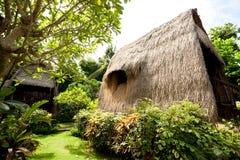 Met stro bedek dakbungalow bij tropische toevlucht Stock Afbeeldingen