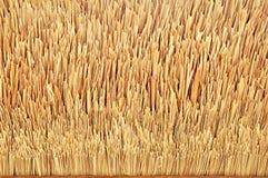 Met stro bedek daktextuur Stock Foto