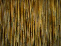 Met stro bedek de Achtergrond van het Gras Royalty-vrije Stock Foto
