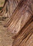 Met stro bedek stapels Stock Foto's