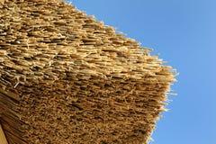 Met stro bedekt dak Royalty-vrije Stock Afbeelding
