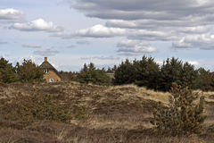 Met stro bedekt huis in heathlands Stock Foto's