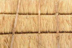 Met stro bedekte daken. Royalty-vrije Stock Afbeeldingen