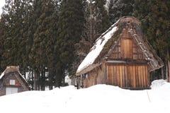 Met stro bedekte die dakhuizen in sneeuw worden behandeld Stock Afbeeldingen