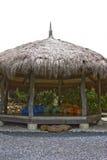 Met stro bedekte hut Stock Afbeeldingen
