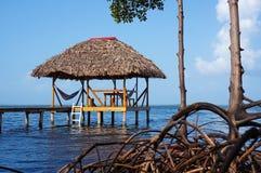 Met stro bedekte hut met hangmat over het overzees Stock Foto