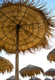 Met stro bedekte paraplu's Royalty-vrije Stock Fotografie