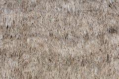 Met stro bedekte Textuur Stock Afbeeldingen