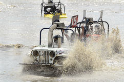 Meta del cochecillo de pantano Fotos de archivo