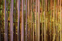 Metaal de partijdecoratie die van de folierand op kleurrijke lichten wijzen stock foto