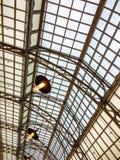 Metaal het dakperspectief van de kaderboog bij station Stock Foto's