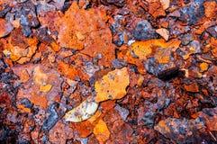Metaal, roest, corrosie, vat, container royalty-vrije stock afbeeldingen