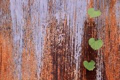 Metaaldeur in roest en groene bladeren Royalty-vrije Stock Afbeeldingen